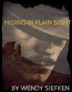 Hiding in Plain Sight Book Cover3
