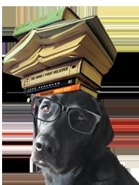 book dogy